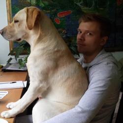 Des chiens légèrement envahissants