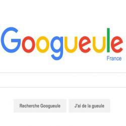 Googueule : pour rendre vos recherches internet un peu plus passionnante