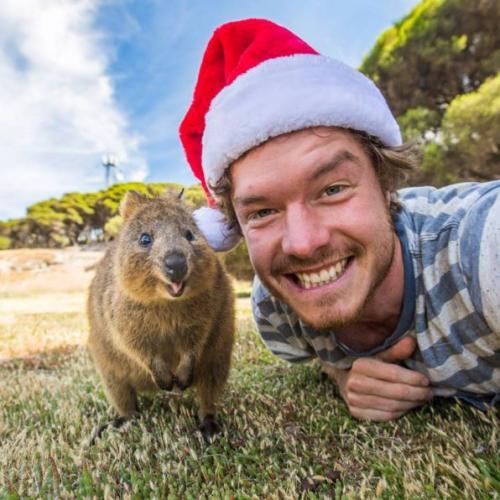 Allan Dixon, selfie avec des animaux