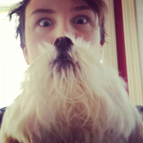 Quand les animaux de compagnie font une superbe barbe