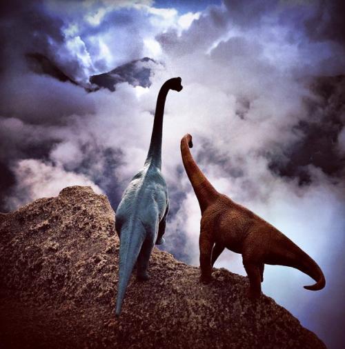 Donner vie à des dinosaures en plastique en les photographiant dans des décors sublimes