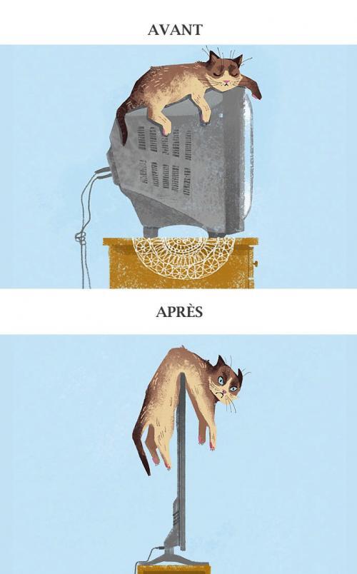 La vie des chats avant / après l'évolution technologique